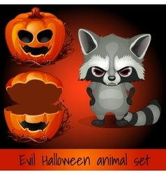 Open pumpkin and evil raccoon on a red background vector