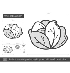 White cabbage line icon vector