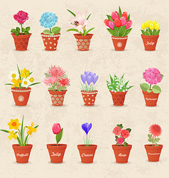 Vintage collection of cute flowerpots with flowers vector