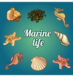 Set of seven shells and sea inhabitants vector