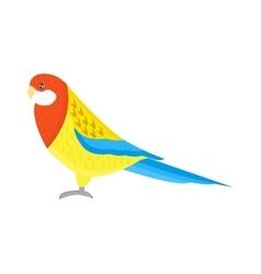 Cartoon parrot isolated bird vector