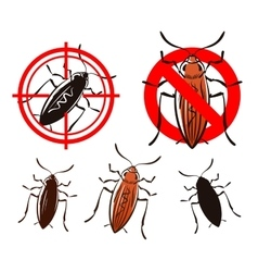 Cockroach set icons vector