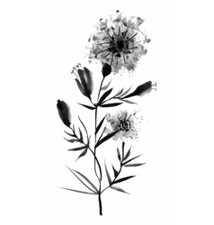 Beautiful hand-drawn monochrome herbs vector