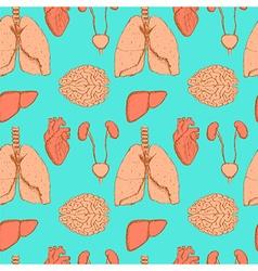 Sketch internal organs in vintage style vector image vector image