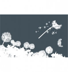 Dandelions in dark vector