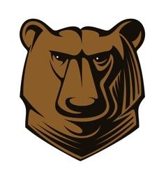 Big brown bear head vector image