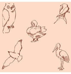 Birds pencil sketch by hand vintage colors vector