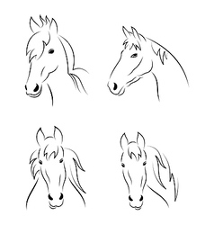 Set symbols outline head horse vector image vector image