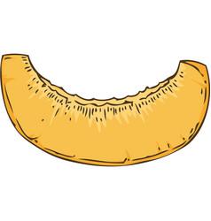 ripe apricot slice vector image