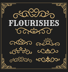 Vintage flourishes vine frame and luxurious vector