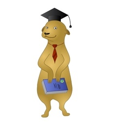 Cartoon meerkat with a book vector image vector image