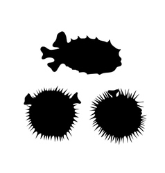Fish hedgehog silhouettes vector