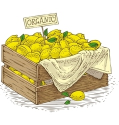 Wooden Box with Ripe Yellow Lemons vector image vector image