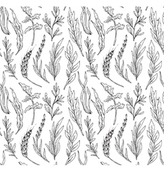 Seamless pattern with hand drawn herbs vector