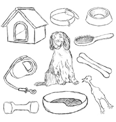 Collection of dog supplies vector
