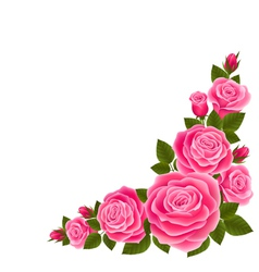 Border of roses vector