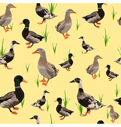 Ducks seamless texture vector