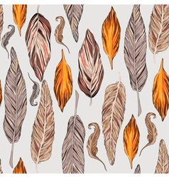 Feathers in vector image