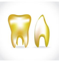 Golden tooth vector image