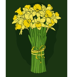 Daffodils bouquet vector