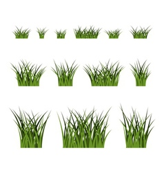 Green grass bushes set plant isolated vector