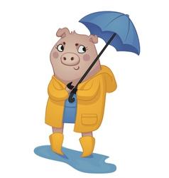 Cartoon Pig in Rain Gear vector image vector image