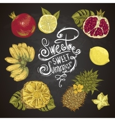 Vintage set of tropical fruit on the chalkboard vector