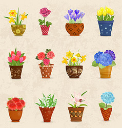 Cozy collection of flowers planted in ceramic pots vector