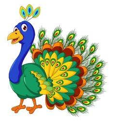 Cute peacock cartoon posing vector
