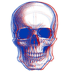 Skull 3d vector