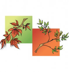 summer and autumn leaves vector image