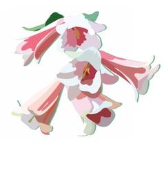Watercolor delicate flowers vector