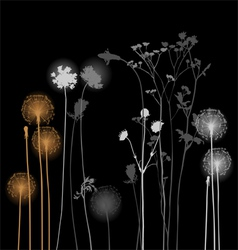 Collection for designers - dandelion plants vector