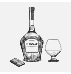 Hand drawn set of cognac elements vector