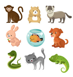 cartoon cute home pets collection vector image vector image