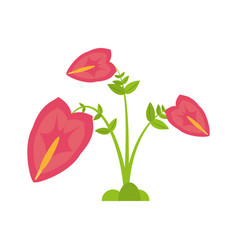 Anthurium leaf plant exotic vector