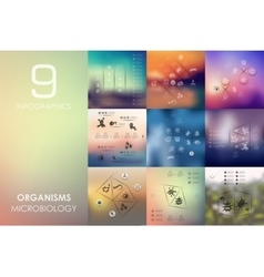 organisms infographic with unfocused background vector image