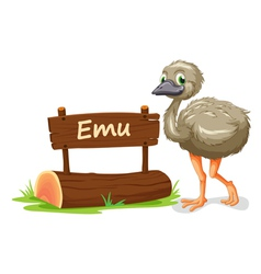 Cartoon zoo emu sign vector image