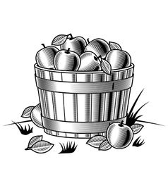 Retro bushel of apples black and white vector image vector image