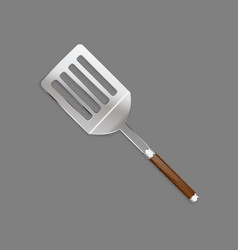 shovels skimmer with a beautiful wooden handle vector image