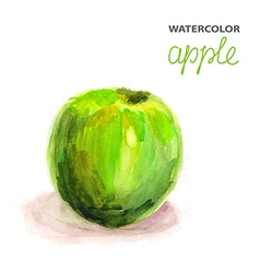 Background with watercolor apple vector image