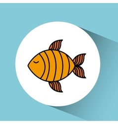 Fish isolated design vector