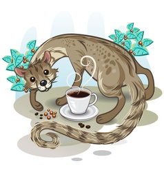 Civet Coffee Kopi Luwak vector image