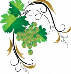 Decorative grapevine vector