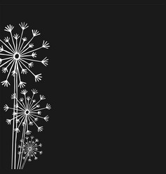 Hand drawn white silhouette three dandelion on a vector
