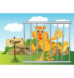 Tiger Zoo vector image