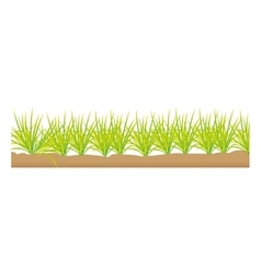 grass terrain field isolated icon vector image vector image