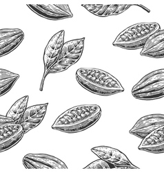 Seamless pattern with leaves and fruits of cocoa vector image vector image