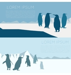 Antarctic banner3 vector image vector image