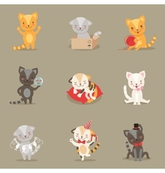 Little Girly Cute Kittens Cartoon Characters vector image